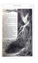 Side 129