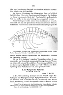 Pagina 506