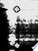 1. aug 1999