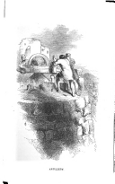 Side 247