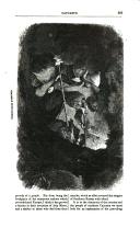 Side 507
