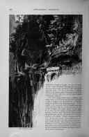 Side 486