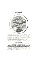 Side 325