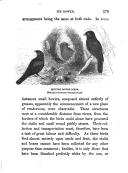Side 173
