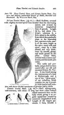 Side 493