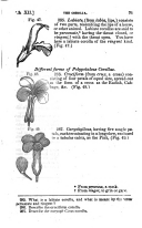 Side 71