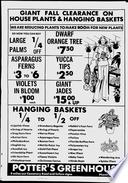 31. okt 1977