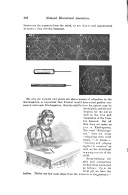 Side 228