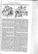 Side 249