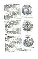 Side 563