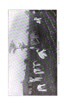 Side 522