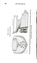 Side 436