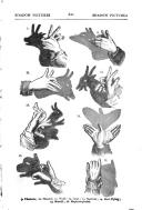 Side 621