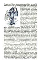 Side 883