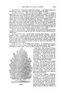 Side 223