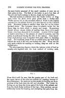 Side 296
