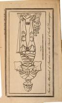 Side 1155