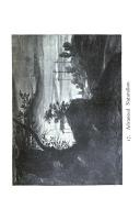 Side 315