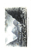 Side 294