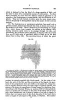 Side 417
