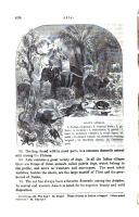 Side 494