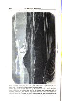 Side 506